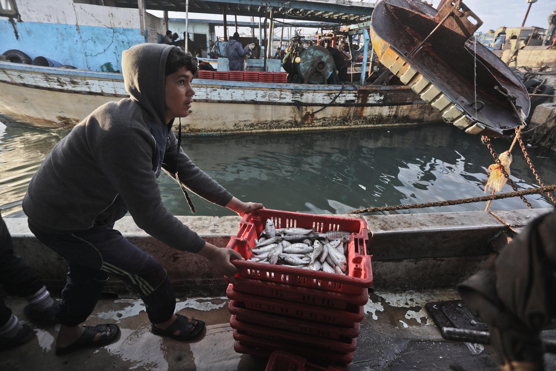 Gaza fish market. Photo: Mohammed Assad